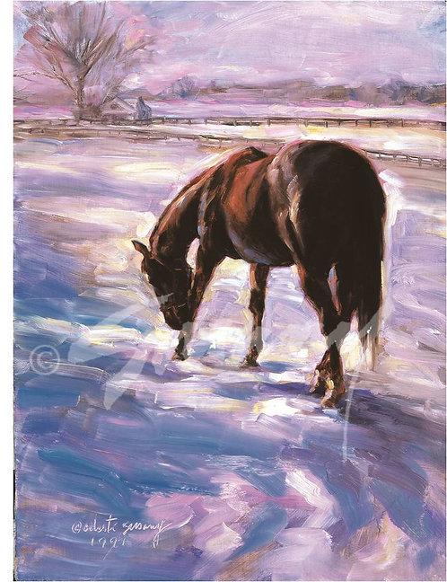 """""""Winter Hues"""" Holiday Cards"""