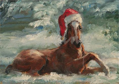 """Jolly Ol' Foal"" Holiday Cards"