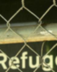 refugee-zaun-600.jpg