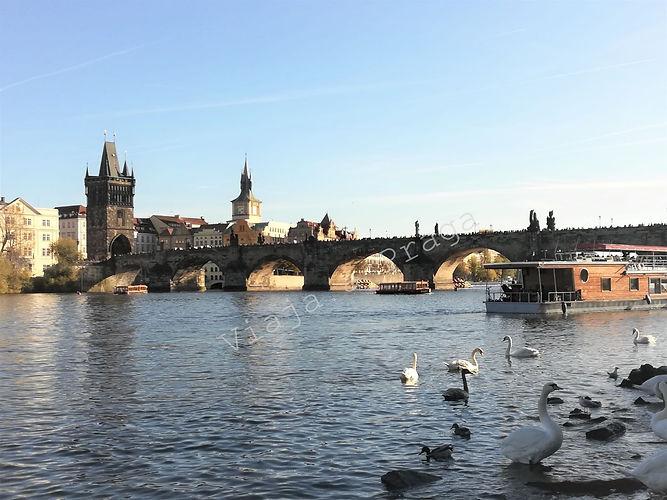 Free tour por Praga.jpg