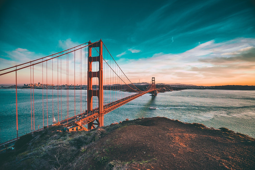 CFO Bridge to Financial Health