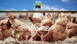 Boss Farms