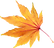 Autumn-Leaves-PNG-Image-86121.png