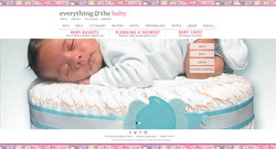 Everything & The Baby Website