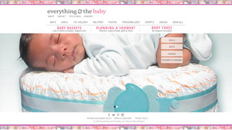 New Website Created - Everything and the Baby