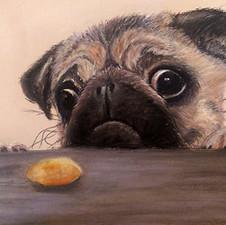 pug-pastel-drawing-sm-by-sandy-cliftonj