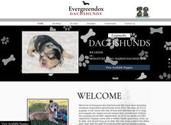 Evergreendox Dachshunds