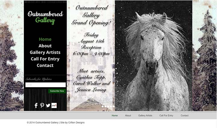 Outnumbered Gallery Website