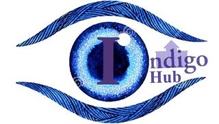 Indigo Hub logo