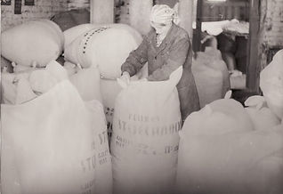4 Svencioniu vaistazoliu fabrikas pakavi