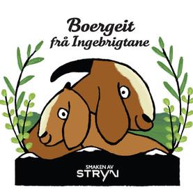 Boergeit logo