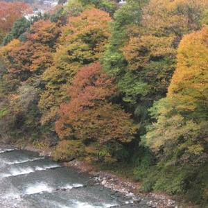 2010.11.16~12.13のトップ画像