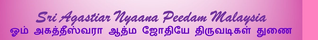 Banner SANP.jpg