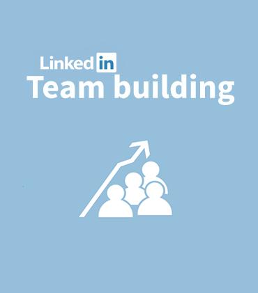 Team Building using LinkedIn