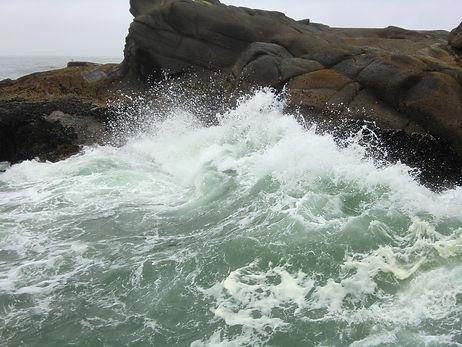 Rock by the sea 2.jfif
