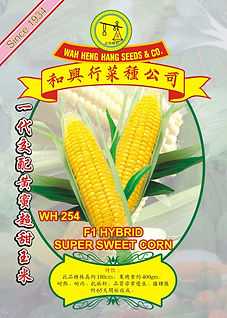 WH254 F1 Hybrid Super Sweet Corn.jpg