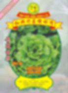 WH38 Lettuce (Salad).jpg
