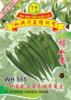 Copy of WH555 F1 Hybrid Green Okra Okra.