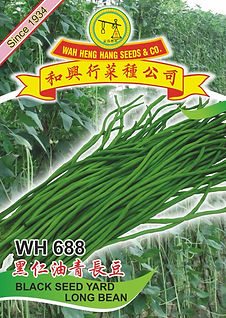 WH688 Black Seed Yard Long Bean.jpg