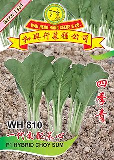 WH810 F1 Hybrid Choy Sum.jpg