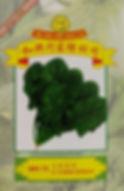 WH73 F1 Hybrid Spinach.jpg