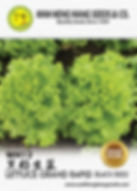 WH12 Lettuce Gand Rapid (Balck Seed).jpg