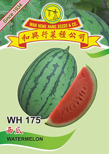 WH175 Watermelon.jpg