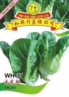 WH37 Salad.jpg