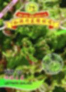 WH10 Lettuce (Salad).jpg