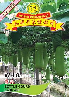 WH85 Bottle Gourd.jpg