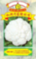 WH081 F1 Hybrid Cauliflower.jpg