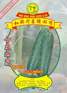 WH028 Cucumber.jpg