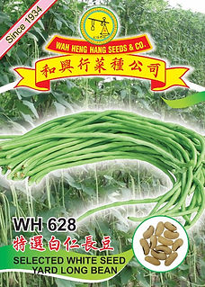 WH628 White Seed Yard Long Bean.jpg