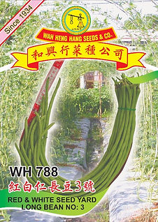 WH788 Red & White Seed Yard Long Bean No