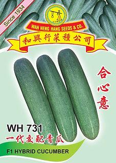 WH731 F1 Hybrid Cucumber.jpg