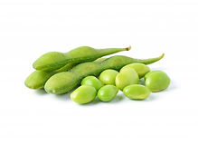 green-soybeans-white-background_62856-66