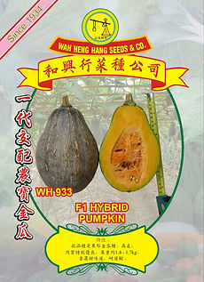 Wh933 F1 Hybrid Pumpkin.jpg