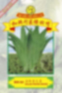 WH64 Salad Wangi Manis.jpg