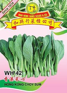 WH42 Hong Kong Choy Sum.jpg
