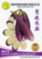 WH76 Long Purple Eggplant.jpg