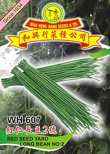 WH607 Red Seed Yard Long Bean No.2