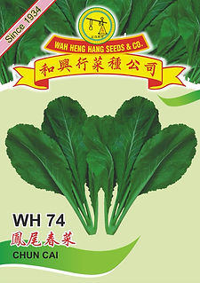 WH74 Chun Cai.jpg