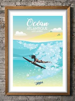 Jellyfish-Ocean.jpg