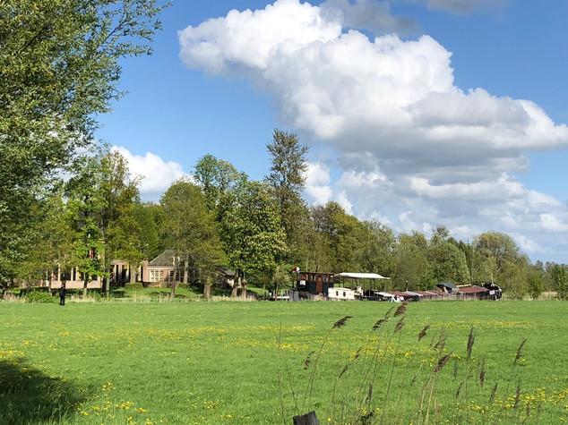 Groene omgeving nabij Vecht in Overijssel