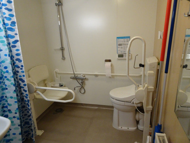 Badkamer met o.a. beugels, douchezitje en thermostaat douchekraan. Toilet met spa toilet (reinigen met warm water en hete lucht)