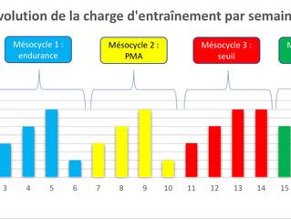 Comparaison de 3 modèles de mésocycles