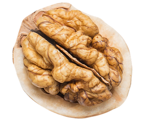walnut%2520(1)_edited_edited.png