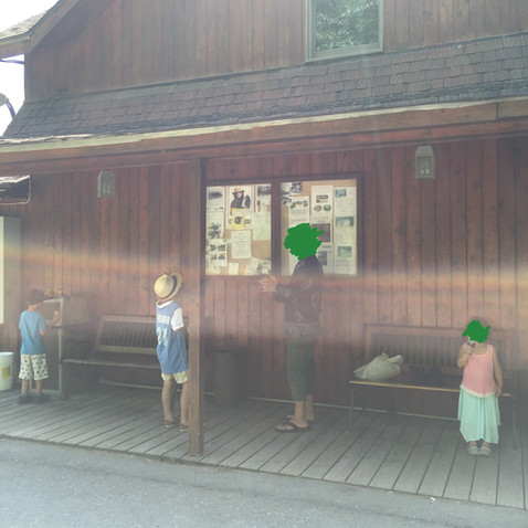 お店の人が、この辺りの山にボールドイーグルの家族が住んでいると教えてくれました
