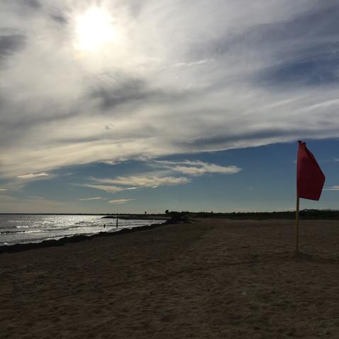 「旗の海」と呼んでます