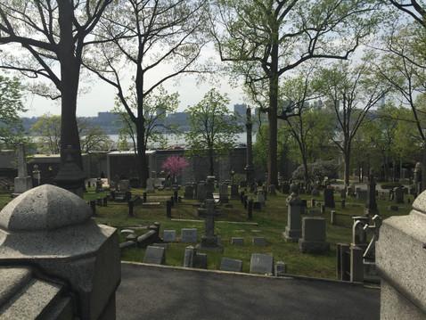 太郎のお墓からの眺め
